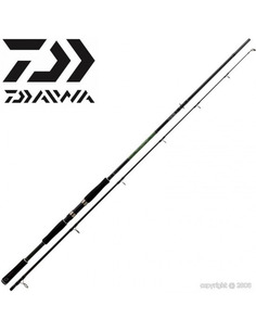 DAIWA Megaforce Big Fish 100-300Gr (3,20Metros)
